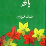 Baagh by Abdullah Hussain Download Free Pdf