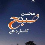 Mohabbat Subha Ka Sitara Hai Novel By Umera Ahmed