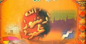 Hazrat Muhammad Bahasiat Mahir e Muashiyat Download Free Pdf