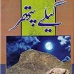 Geelay Pathar Novel By Muhammad Fayyaz Mahi Pdf