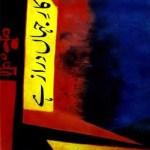 Kar e Jahan Daraz Hai By Qurratulain Haider Pdf