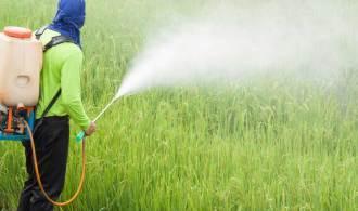 Roundup : les documents qui accablent Monsanto