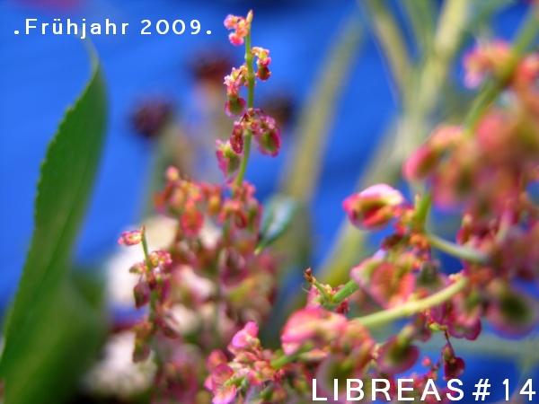 LIBREAS Ausgabe 14