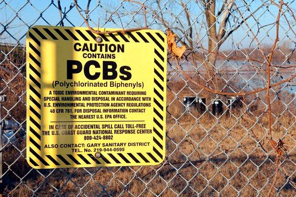 Río y fauna contaminados por PCBs