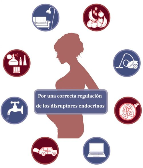 regulación disruptores endocrinos