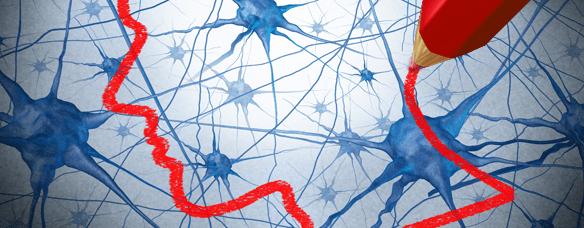 Neurociencia y Aprender a leer