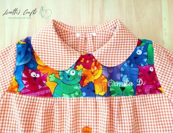 babi gatos multicolor cuadros naranjas