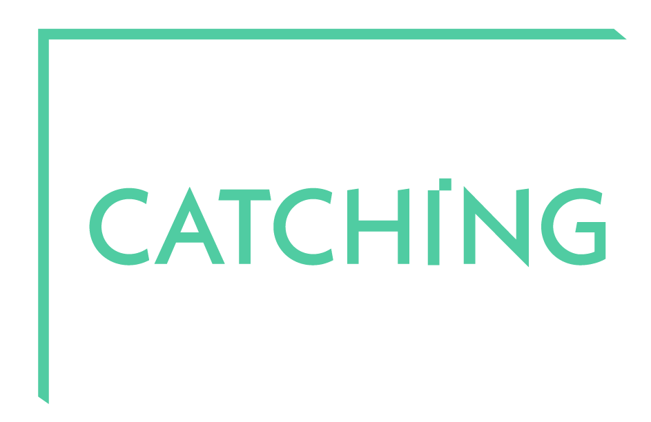 lichtcatchingtoby