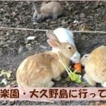 *うさぎの楽園・大久野島に行ってきました