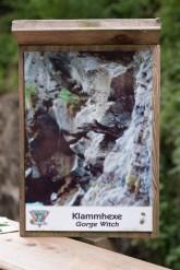 Sigmund-Thun-Klamm-Klammhexe