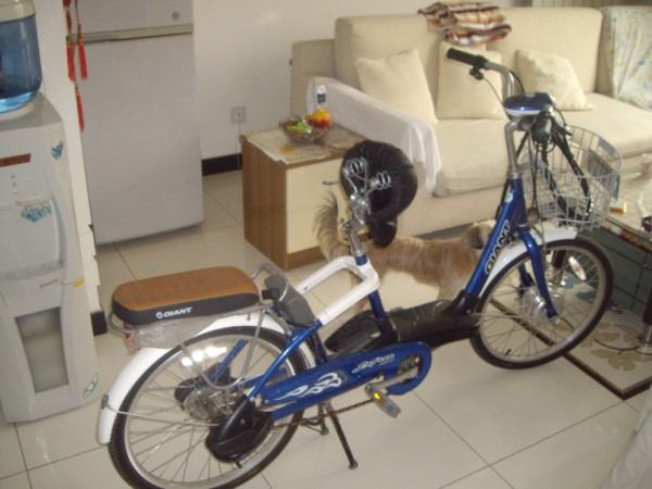 מכסה-סוללה מנוע-אופניים-חשמליים סין בייג'ין רכב-חשמלי תחבורה-ציבורית