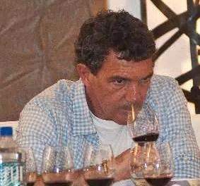 Antonio Banderas presenta su propio Vino