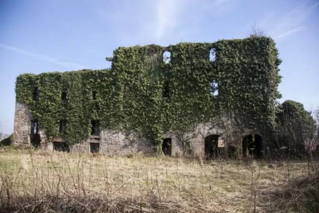 Destilería en ruinas, volverá a la vida