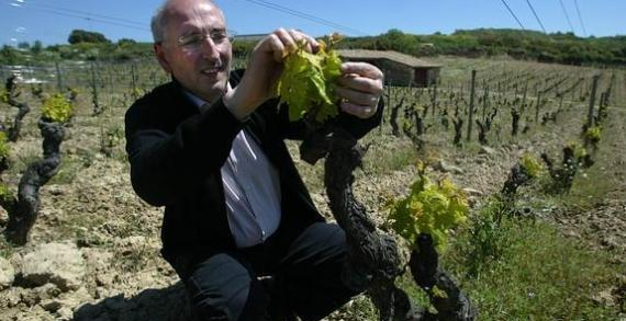 Bodegas Artadi abandona la DOC Rioja