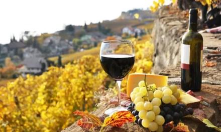 La producción mundial de vino en 2020 por debajo de la media