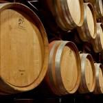 El Bierzo: degustación y promoción de 10 vinos