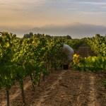 Juvé and Camps: 220 años de calidad y continua renovación