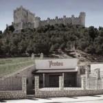 Protos: viñedos de 30 años y vinos equilibrados y complejos