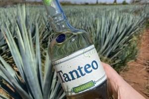 Tanteo Tequila Licores favoritos