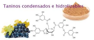 Enartis presenta Hideki®, el super tanino para la protección natural del vino 1
