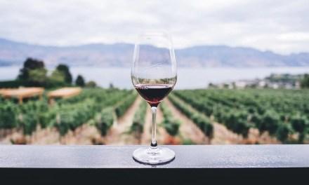 El vino ecológico tienen mejor sabor tras estudiar 200,000 vinos