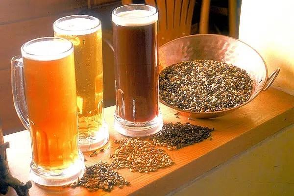 La elaboración de la cerveza (Parte 1): la malta y el lúpulo