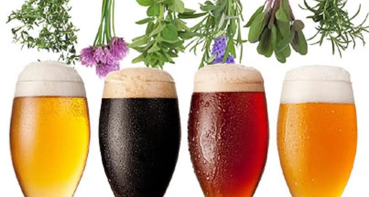 Aditivos en la cerveza: sabor y calidad en 6 elementos