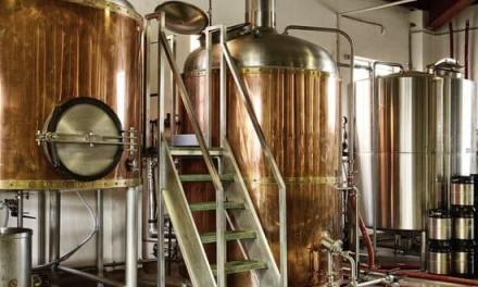 La elaboración de la cerveza: 10 fases de una bebida enloquecedora de multitudes