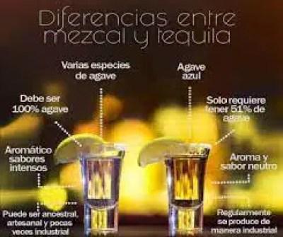 diferencias entre el mezcal y el tequila