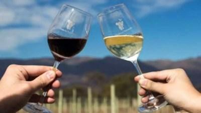 Día Nacional del Vino en Estados Unidos: una fecha para celebrar 1