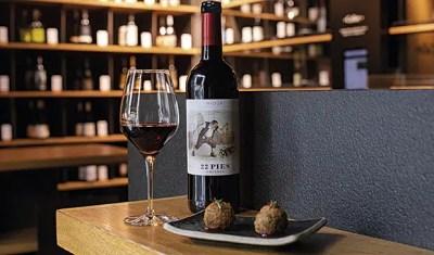 vino moderno