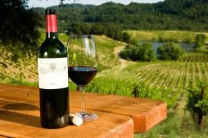 Ruta del Vino de Baja California: zona que concentra el 80% de la producción de vinos nacionales 1