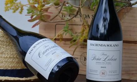 Hacienda Solano: vinos parcelariosde una pequeña bodega familiar en Burgos