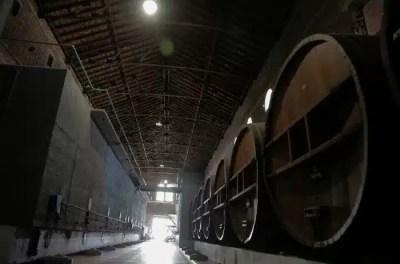 ruta del vino en Córdoba