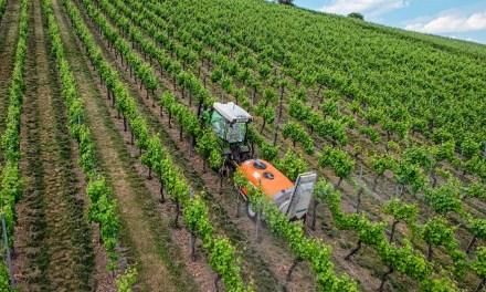 Perspectivas comerciales para los vinos españoles