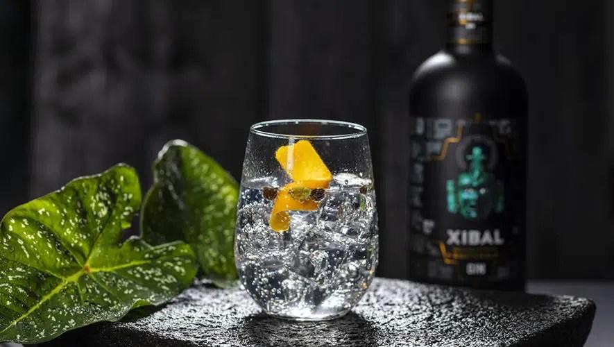 Gin Xibal, ginebra artesanal altamente reconocida en el Gin Masters 2021