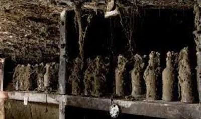 colección de ron Harewood