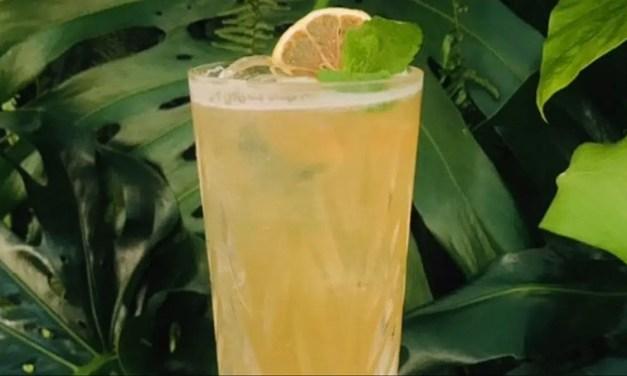 Hokkaido Lemonade, una versión de Daniel Madeddu