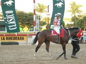 Dollarized horse racing
