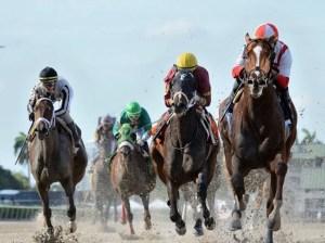The equestrian prognosis (I)