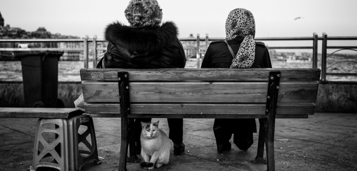 Istanbul, street photographers, street photography, Leica M Monochrom, travel, cats, black and white