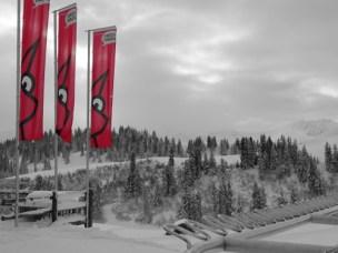 Ein perfekter Wintertag
