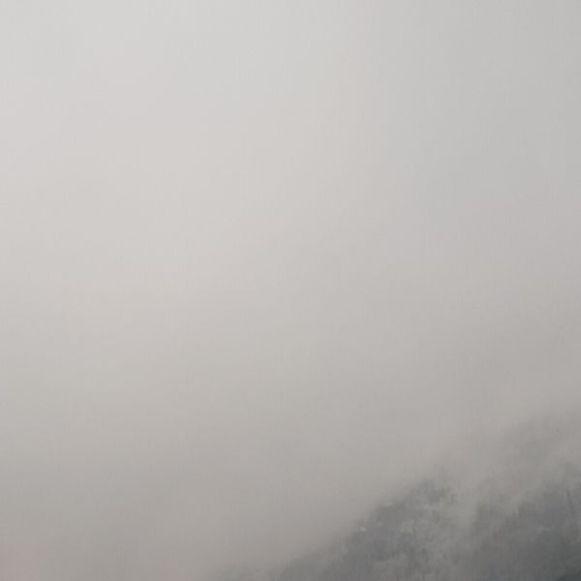 Gonzen bei Nebel und Schnee am morgen früh. 12v12