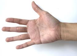 Handinnenfläche