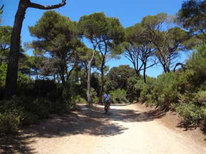 Fahrradweg auf Porquerolles