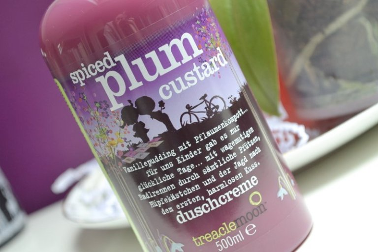 Treaclemoon spiced plum custard