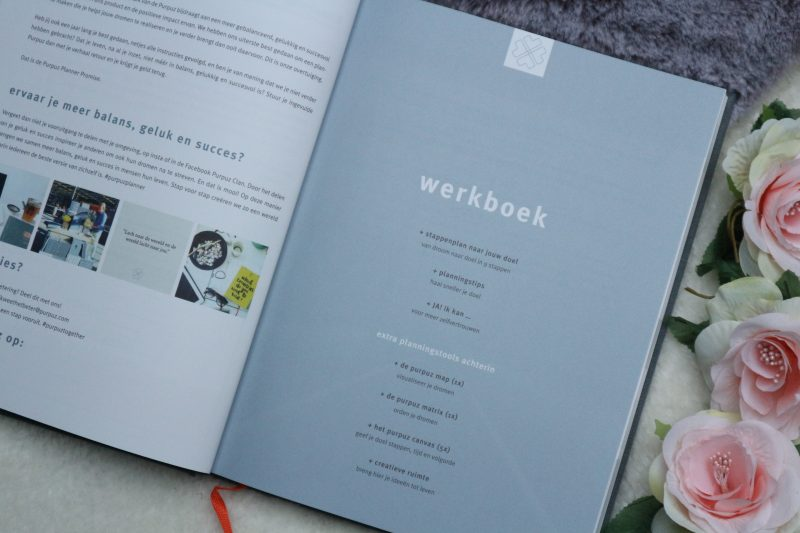 purpuz werkboek