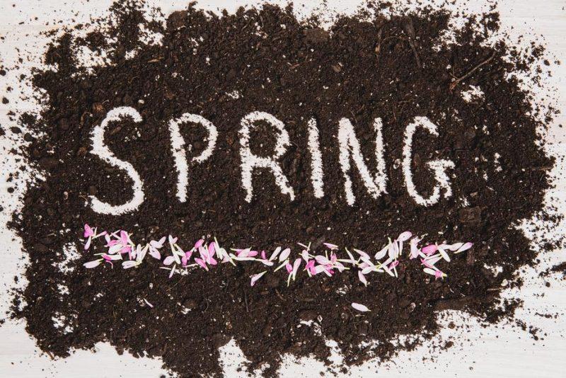 voorjaarsschoonmaak, makkelijke moestuin app