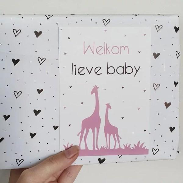 Kaart welkom lieve baby meisje giraffe