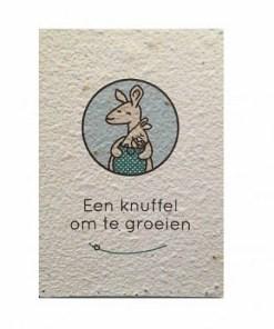 Groeikaart Kleine kanga, groeipapier, kaart, liefsvanlauren.nl